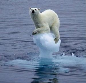 Tre-nuovi-rapporti-UNEP-sui-cambiamenti-climatici